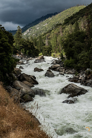 The flow of the Merced river was huge this year!  It was amazing to see the power.