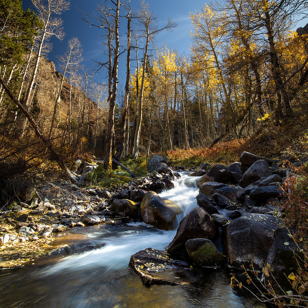 McGee Creek, John Muir WIlderness