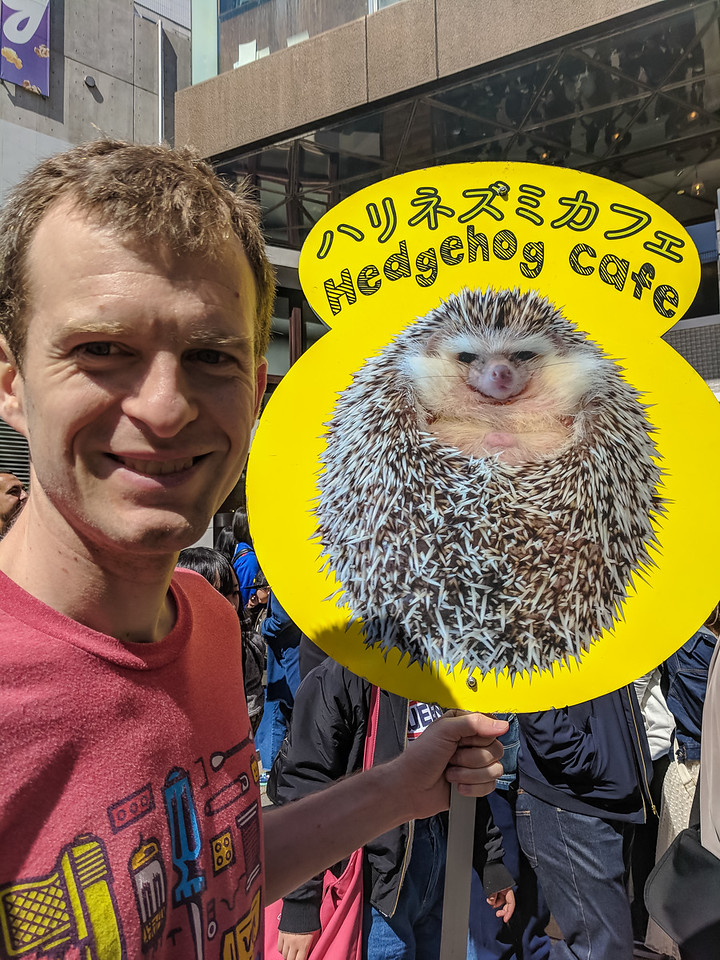 Last person in line for the hedgehog cafe holds this sign so others know where the end of the line is. We cleverly came back a different day when it was less busy.