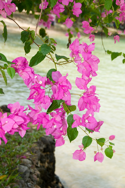 Thailand 0469