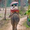 Thailand 0166