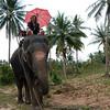 Thailand 0187