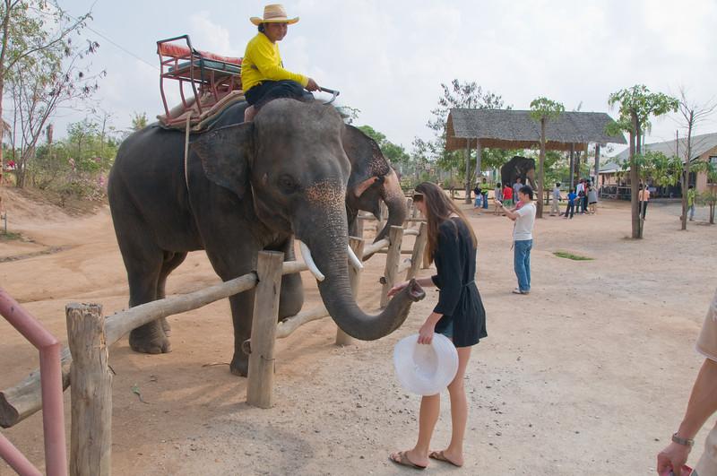 Thailand 0158