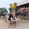 Thailand 0212