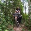 Thailand 0197