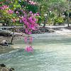 Thailand 0476