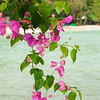Thailand 0468
