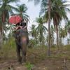 Thailand 0175