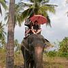 Thailand 0169