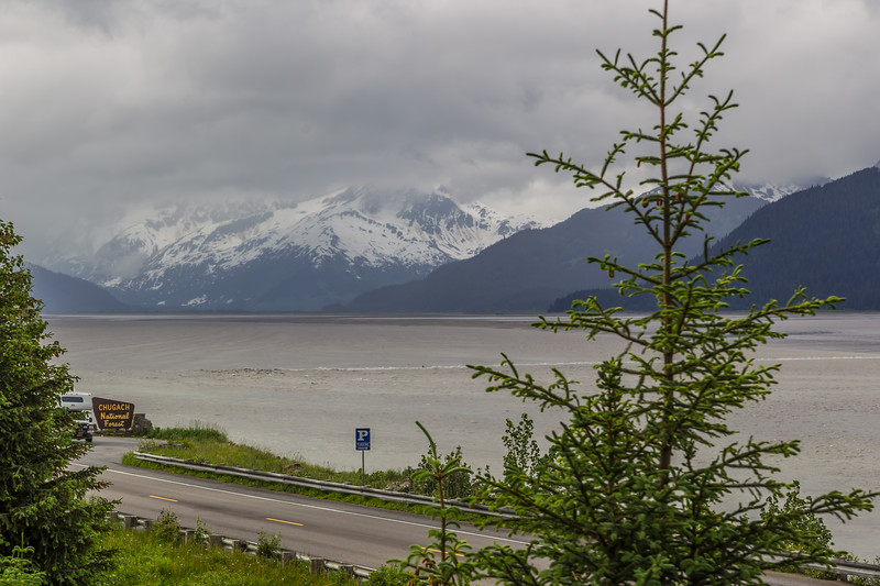 SURFING in Alaska...look just to the left of the tree where the water is breaking..that small dot in the breaking water is someone on a surf board
