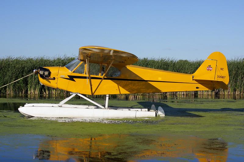 N33587 (NC33587) Piper L-4J Grasshopper c/n 14064 Oshkosh/KOSH/OSH 28-07-10