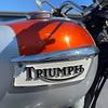 Triumph Bonneville -  (118)