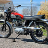 Triumph T100SC -  (2)