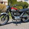Triumph T100SC -  (1)