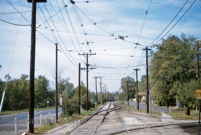 PSCO 49 - Oct 19 1954 - University car line looking west from Big Bend Loop - St Louis MO