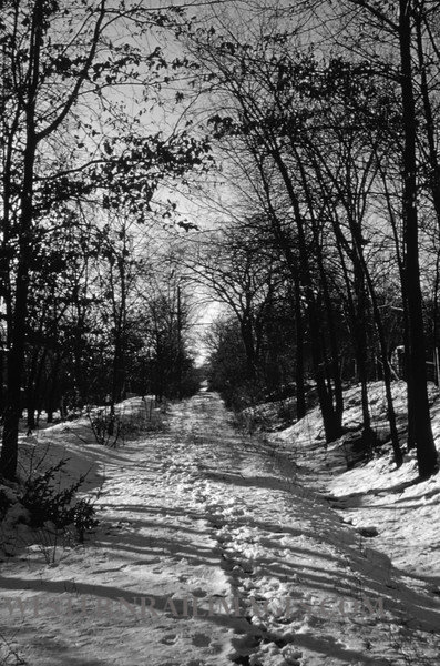PSCO 229 - Feb 7 1958 - looking W on old 04 Clayton line E of McKnight Rd - St Louis MO