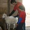 Mattia (a leader from Xaghra Scouts) & Nicholas petting the goat