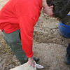 VS Chris petting a sheep