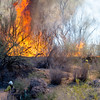 Brush Fire, Lower Salt River