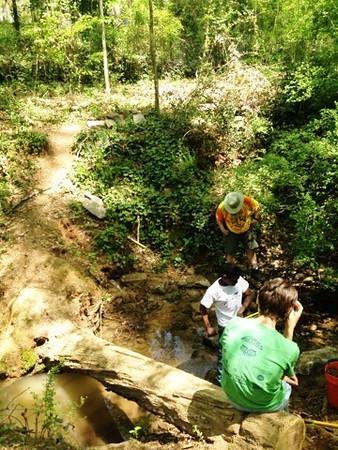 Glenn Creek Nature Preserve (Brendan B Project)