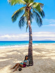 Eating lunch under an idyllic coconut palm tree on an idyllic tropical beach. A dangerous place to sit, by the way, since falling coconuts kill more people each year than shark attacks.