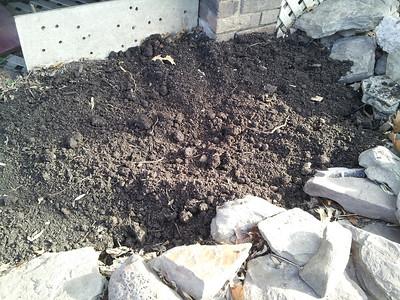 Bo's rich, sheep/cow/horse/compost laden soil in his 40 yr old garden