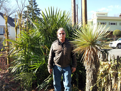 Bo with 2009 transplanted needle palm