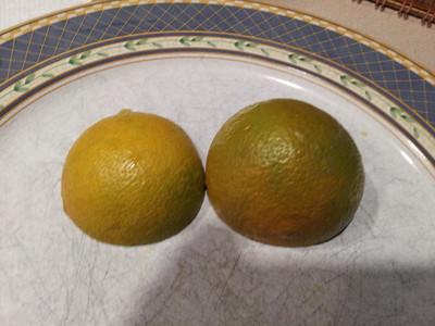 slightly unripe fruit