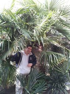 John in the palms