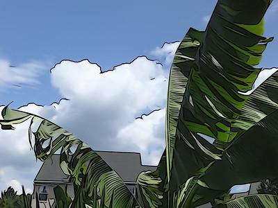 Tropical Jungle 'Toons
