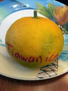 TAIWANICA