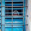 Havana Smile Behind Bars