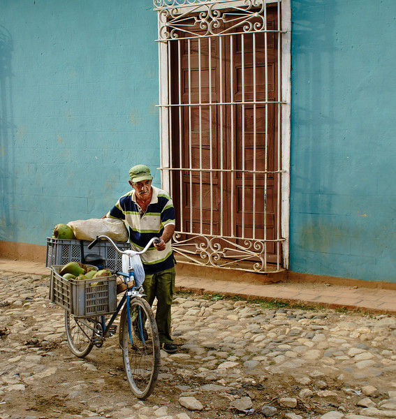 Bike Fruit Vendor