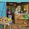 Trinidad Fruit Market