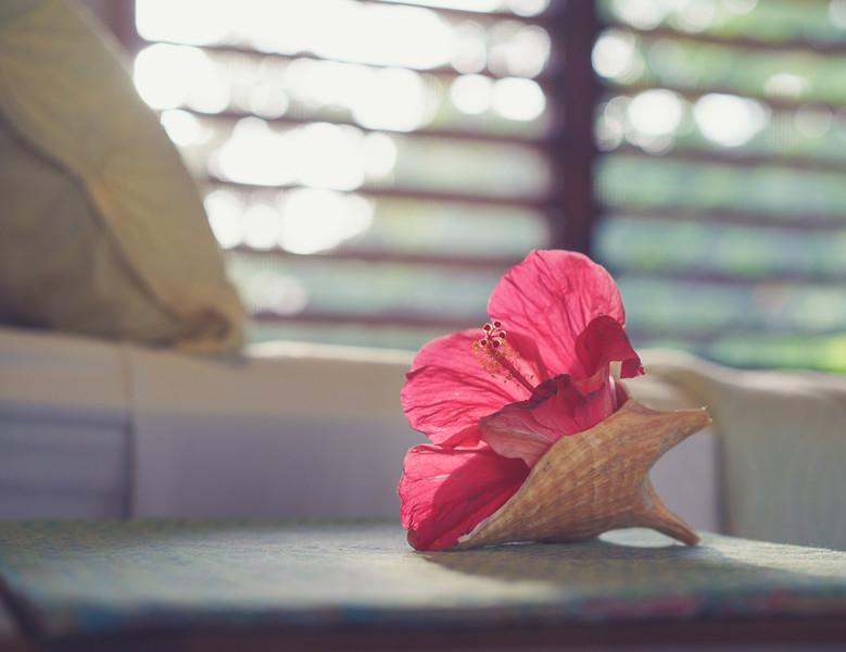 Bedside Flower