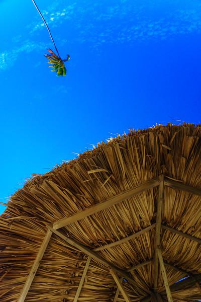Palm Tree Flyover
