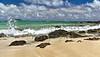 tropical island white sandy beach and surf