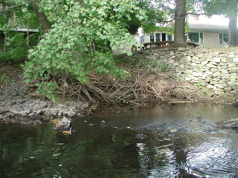 Example of stream channel erosion very close to properties downstream of North Main Street, which is due to high volumes of stormwater run-off during heavy rain storms. Increased development in upstream open space increases flooding and stream channel erosion that can decrease the value of downstream properties.