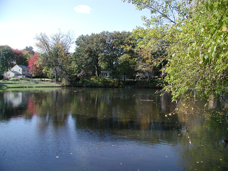 pond above dam, south of Brookside
