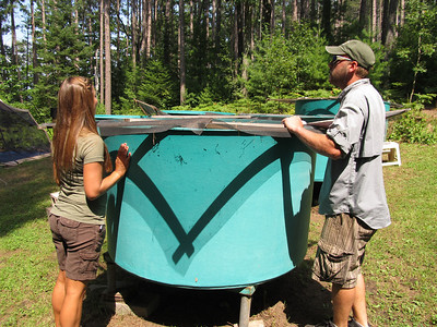 An experiment set up using mesocosms looks at how aquatic plants survive being air dried, then re-submerged into water.