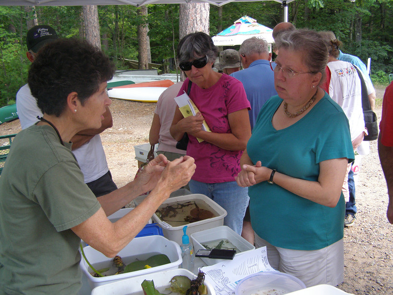 Susan Knight again provided one of the more popular stations, displaying dozens of macrophytes (aquatic plants) and invertebrates like crayfish, mussels and even freshwater jellyfish.