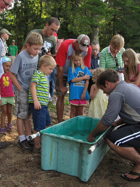 Children crowd around in excitement to look at the fish pulled up in the fyke net.