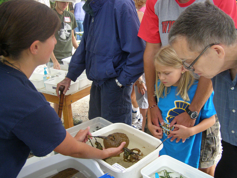 Student Emily Hilts shows a freshwater bryzoan to a visiting family.