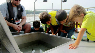 Examining the fish from the fyke net pull