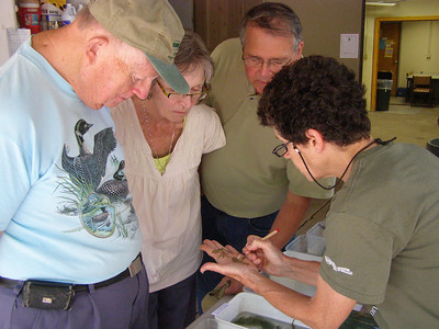 Susan Knight explains how to tell the invasive Eurasian water milfoil from Wisconsin natives.