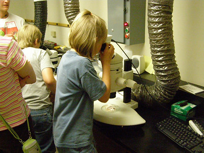 Using the Station's microscopes, a young visitor checks out the zooplankton she pulled out of Trout Lake in a plankton net.