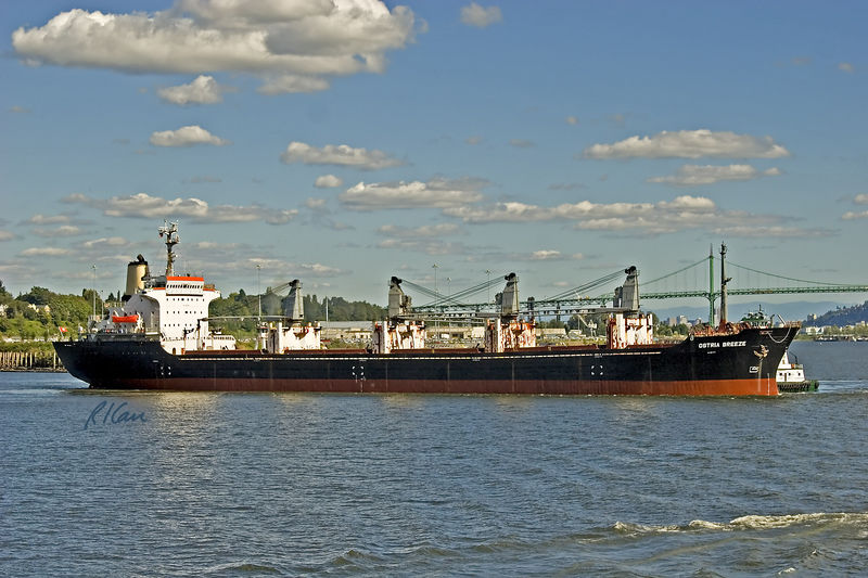 Marine transportation: Bulk carrier ship Ostria Breeze, 17,679 gross tons, 9894 net tons. Tug boats are pushing on bow and stern to head ship out. Lower Columbia River near Pacific Ocean. 2005.
