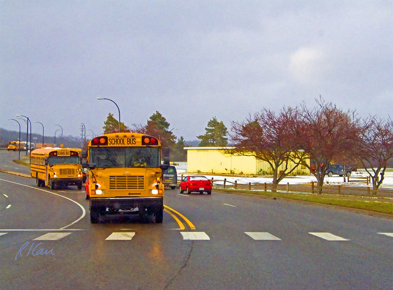 School buses: International school buses loaded with students returning home heading South on Huron Parkway from Huron High School, which is in the far left distance. To either side of Huron Parkway is Huron Hills Golf Course, with par 3 third hole at far right. Ann Arbor, MI, December 2004.