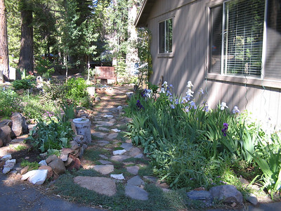 06_20_06 Front Path