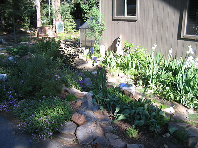 06_24_06 Front Yard